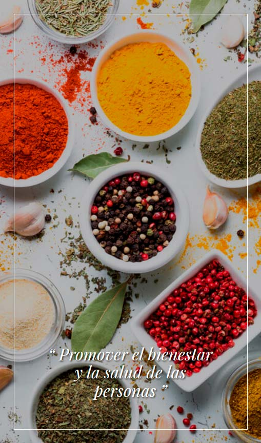 Curso cocina Ayurveda